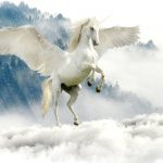 Pegasus (Whisper Publishing)